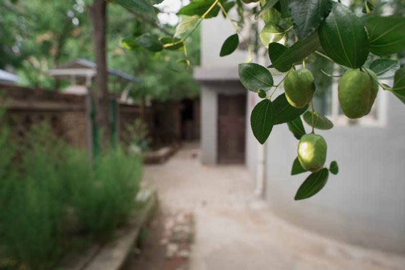 sanbaotai
